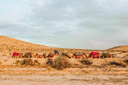 3_days_itinerary_marrakesh