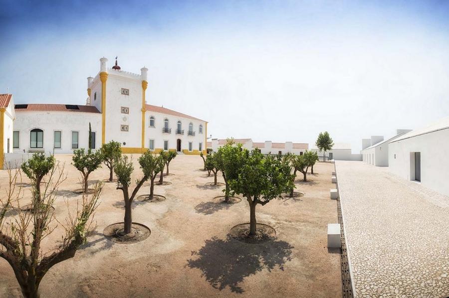 Torre de Palma para vindimas
