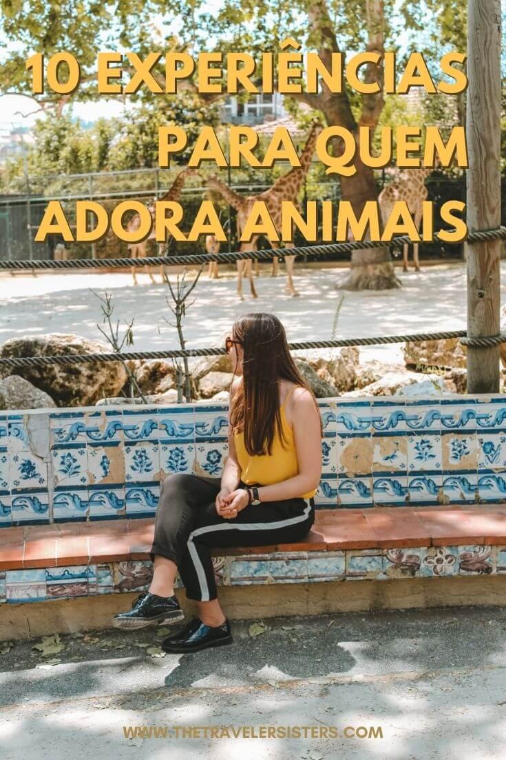 10 experiências para quem adora animais em portugal