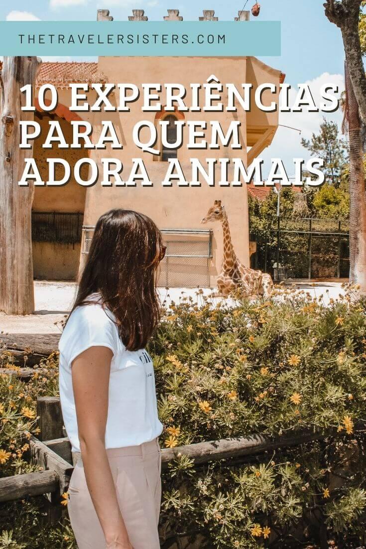 10-experiências-para-quem-adora-animais